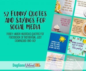 52 Funny Quotes For Social Media Thumbnail